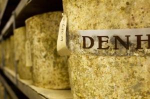 Denhay Farmhouse cheddar maturing