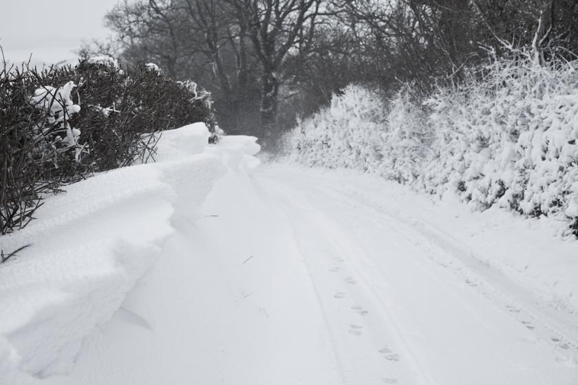 Hilltop, drift and horizontal snow